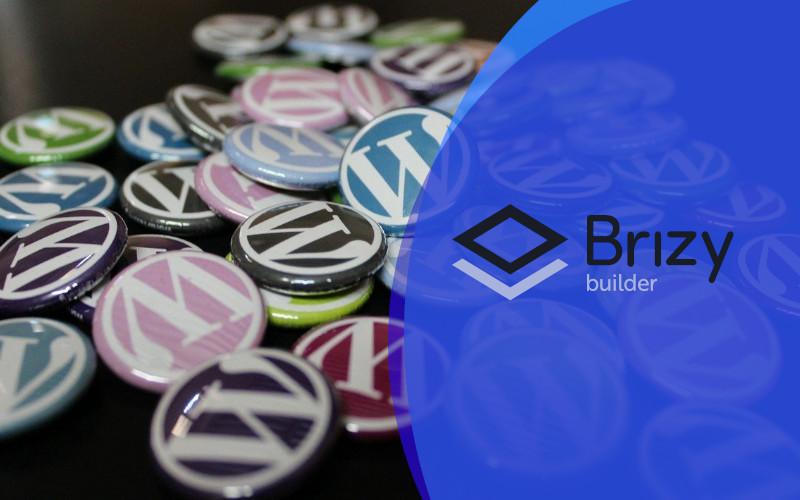 7 Best WordPress Themes for Brizy